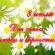 08 июля – Всероссийский день семьи, любви и верности!